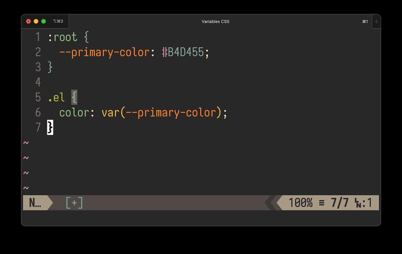 utilisation de variables CSS dans un éditeur de texte